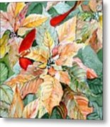 A Peachy Poinsettia Metal Print