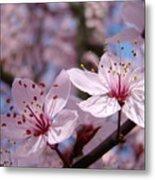 Floral Art Pink Spring Blossoms Prints Blue Sky Baslee Troutman Metal Print
