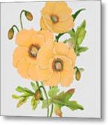 Floral Botanicals-jp3785 Metal Print