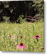Floral Bridge Metal Print