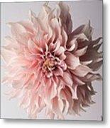 Floral Elegance Metal Print