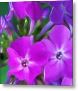 Floral Expression 2 021911 Metal Print by David Lane