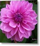 Floral In Pink Metal Print