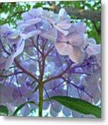 Floral Landscape Blue Hydrangea Flowers Baslee Troutman Metal Print