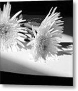 Floral No3 Metal Print