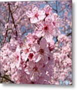 Floral Spring Art Pink Blossoms Canvas Baslee Troutman Metal Print