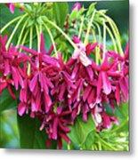 Floral006 Metal Print