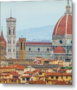 Florence And The Roofs Metal Print