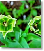 Florescent Green In Stereo Metal Print