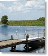 Florida Backwater Metal Print