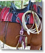 Florida Cracker Cow Whip Metal Print