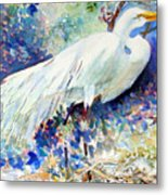 Florida Egret With Nest Metal Print