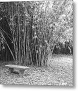 Florida Garden Scene_010 Metal Print