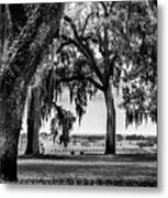 Florida Interior From Bok Gardens Metal Print