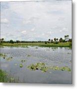 Florida Landscape Metal Print by Steven Scott