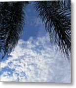 Florida Palm Fronds Blowing In The Breeze Metal Print
