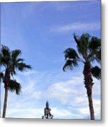 Florida Queen Palm   Metal Print