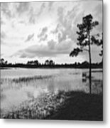 Florida Scene Metal Print by Steven Scott