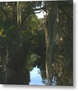 Florida Swamp Metal Print