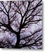 Floss Silk Tree Metal Print