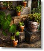 Flower - Plant - A Summers Soak  Metal Print by Mike Savad