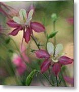 Flower 3506_2 Metal Print