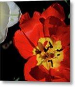 Flower 55 Metal Print