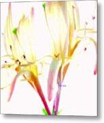 Flower 9315 Metal Print