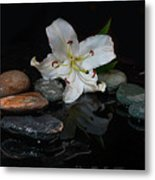 Flower And Stone Metal Print