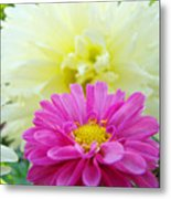 Flower Art Print White Pink Dahlia Floral Canvas Baslee Troutman Metal Print