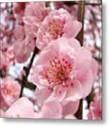 Flower Blossoms Art Spring Trees Pink Blossom Baslee Troutman Metal Print