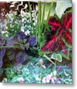 Flower Box Metal Print