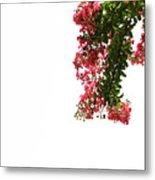 Flower Branch Metal Print