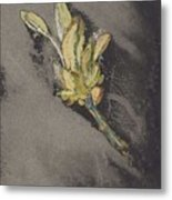 Flower, Carel Adolph Lion Cachet, 1874 - 1945 Metal Print