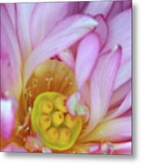 Flower Center Metal Print