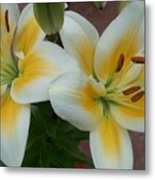 Flower Close Up 5 Metal Print