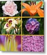 Flower Collage 1 Metal Print