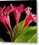Flower Composite Trio Horizontal Metal Print