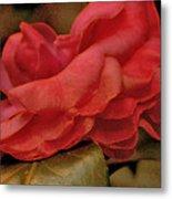 Flower Dusting Metal Print
