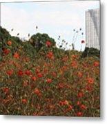 Flower Field In Hama-rikyu Gardens Metal Print