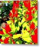Flower Flames Metal Print