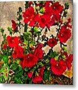 Flower Garden 11 Metal Print