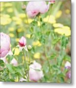 Flower Garden Bouquet Metal Print