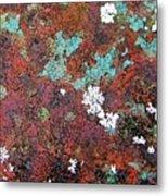 Flower Garden In The Rust Metal Print