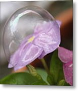 Flower In A Bubble Metal Print