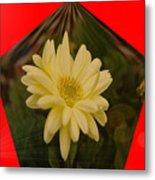 Flower In A Pentagon  Metal Print