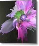 Flower In Black Metal Print