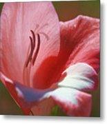 Flower In Pink Pastel Metal Print