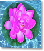 Flower In The Pool Metal Print