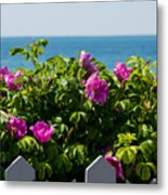 Flower Island View Metal Print